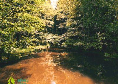 Běhej lesy Vysočina 21 km